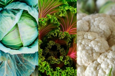 These are the most nutritious vegetables on earth