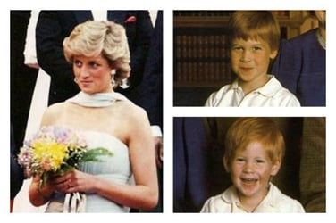 Lady Diana called her children hours before the fatal accident