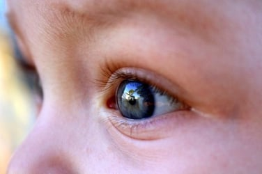 5 signs your child needs an eye check-up now!