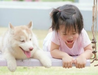 What's the best first pet for a child?