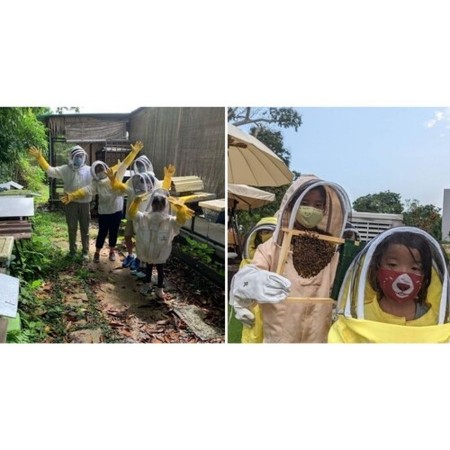 Bee Farms In Singapore