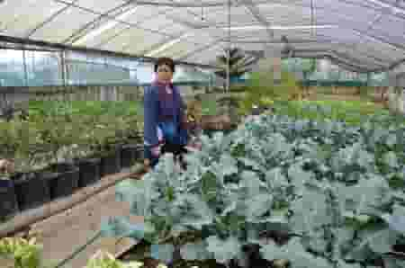 Inglay takes a look around her rooftop garden.