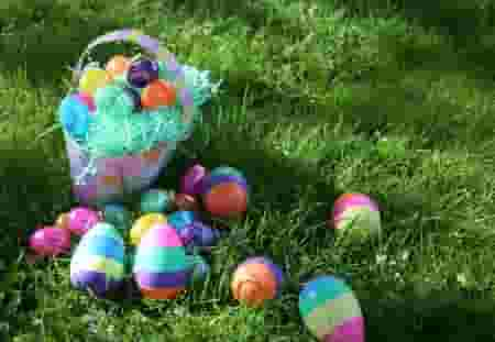 Celebrate Easter with an egg-citing egg hunt!