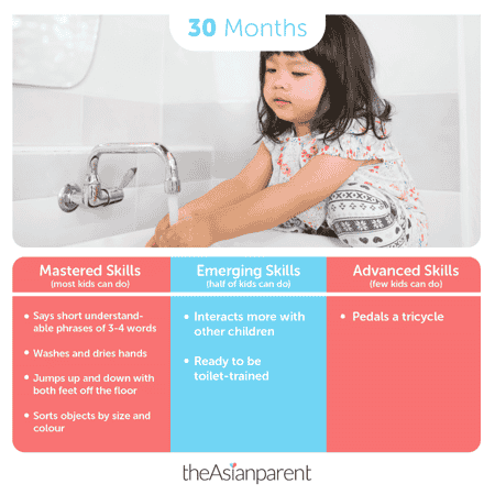 Toddler Development and Milestones: Your 2 Year and 6 Month Old
