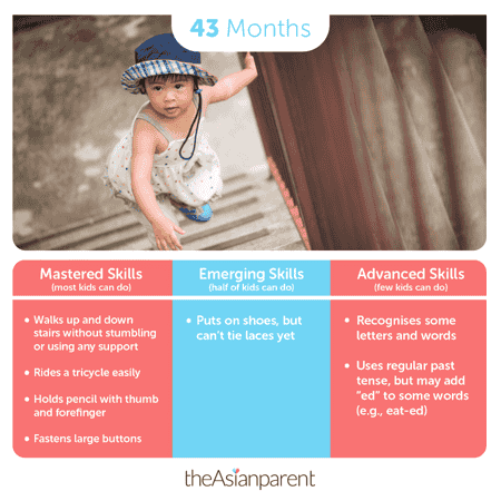 Child development and milestones: your 43 month old