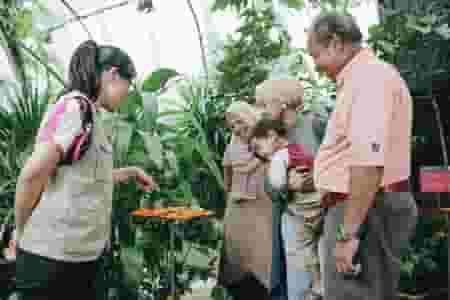 September School Holiday Activities for families