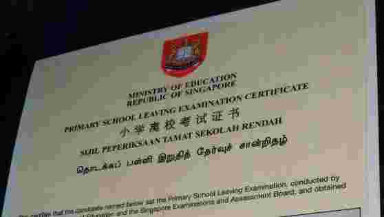 psle results 2014