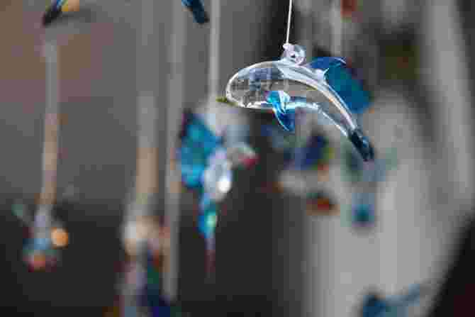 glass-dolphin