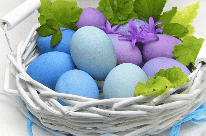 best eggs to eat