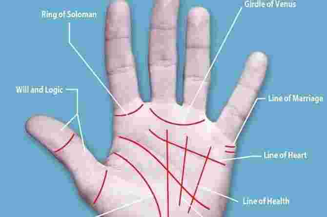 palm reading for female