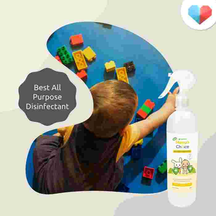 Mama's Choice All-Purpose Disinfectant: Best all purpose disinfectant