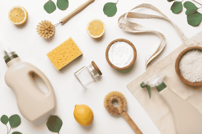 eco-friendly products examples