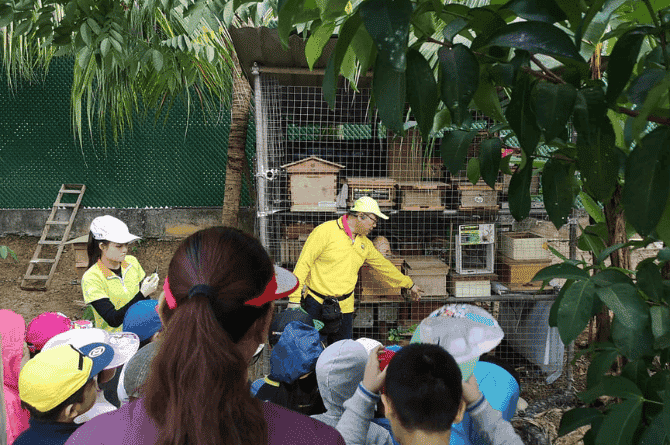 4 Best Kid-Friendly Bee Farms In Singapore You Must Visit