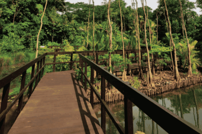nature parks in singapore