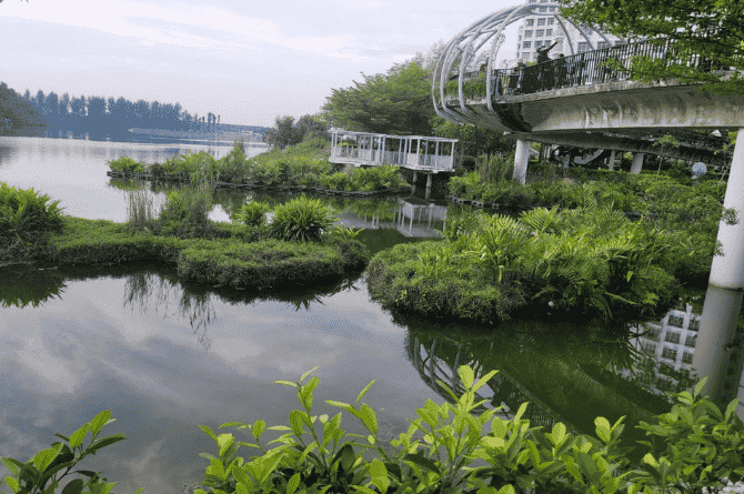 How This Five Month Pregnant S'pore Mum Explored The 36km-Long C2C Trail