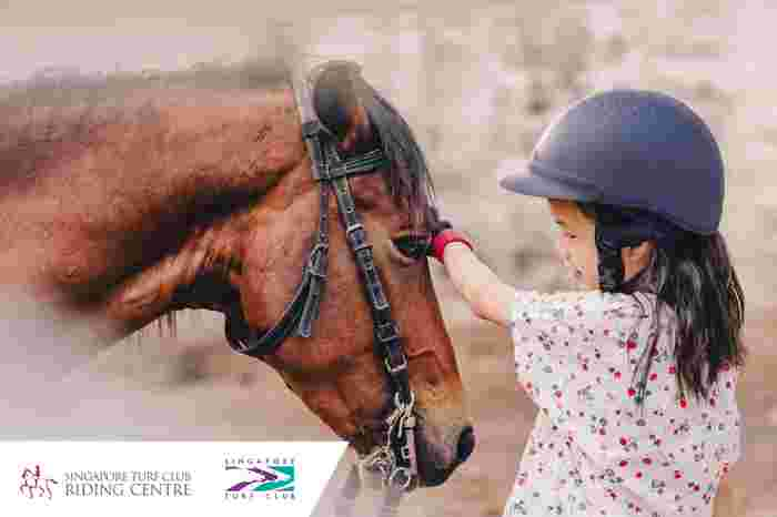 Try Equine Activities During September Holidays At The Singapore Turf Club Riding Centre
