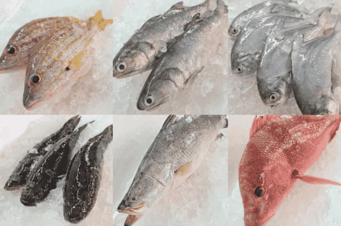 5 Best Places To Buy Fresh Seafood In Singapore