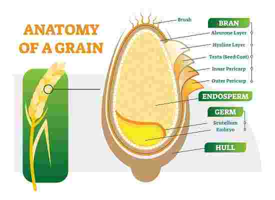 how to eat whole grains