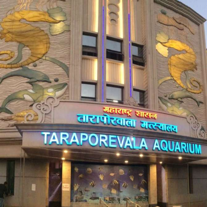 TaraporewalaAquarium_Renovated