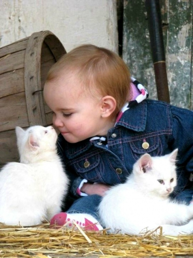 This girl and her kittens are paws-itively adorable