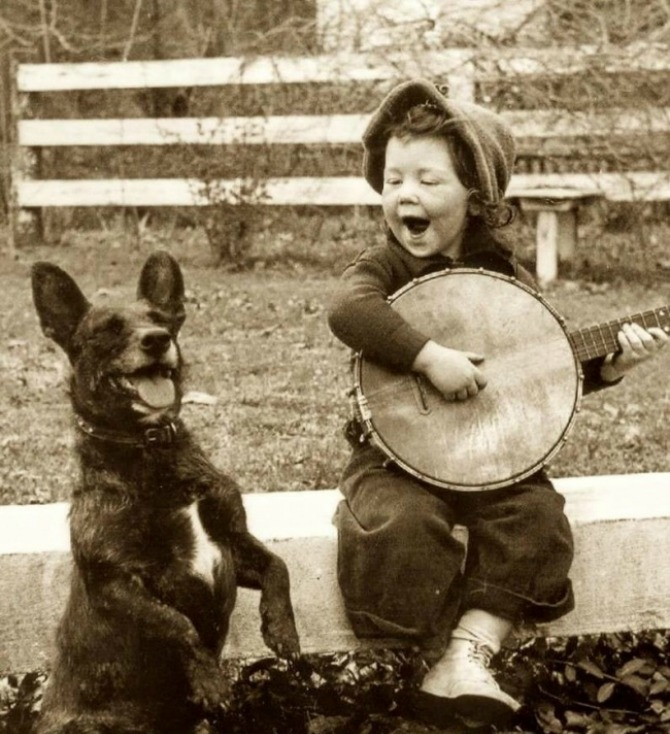 """""""You ain't nothin' but hound dog...literally"""""""