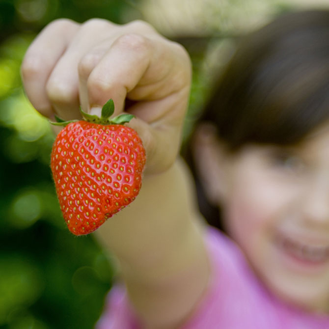 15 cancer fighting foods for kids