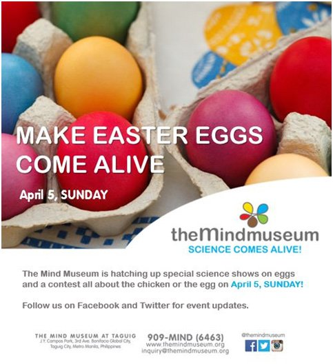 Make Easter eggs come alive at The Mind Museum
