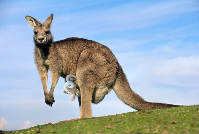 """Having a good time """"down under"""""""