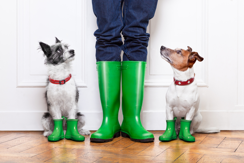Keeping Your Kids Happy And Your Pets Safe