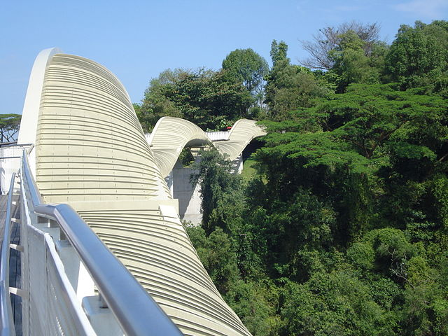 Henderson Waves – The only bridge with sculptural structure!