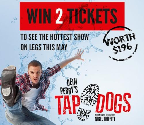 tap dogs singapore