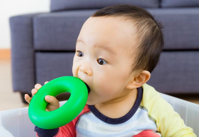 Baby bites toy The hidden dangers of Squishies and other toys