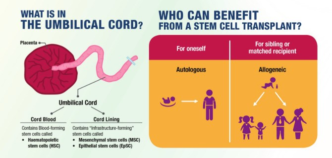 cord blood banking