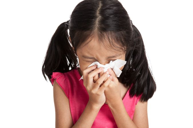 getting rid of household allergies