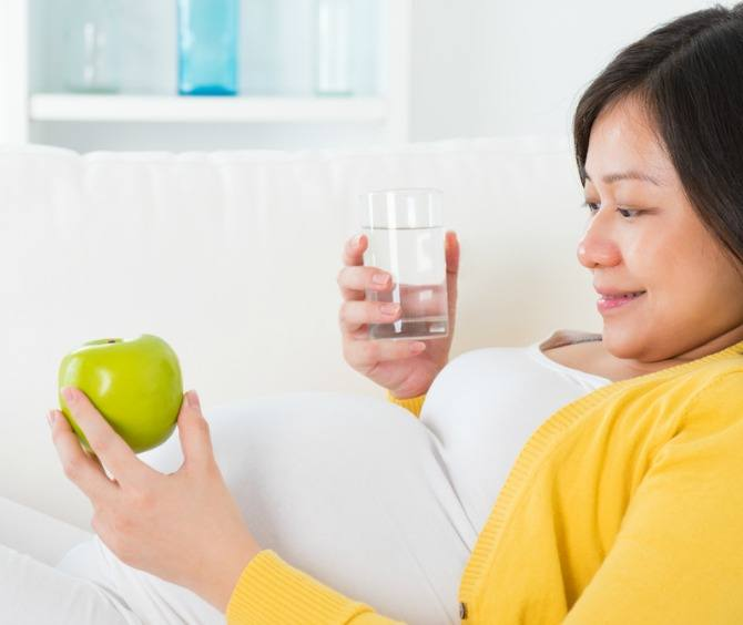 Wyeth2 Understanding your nutritional needs during pregnancy