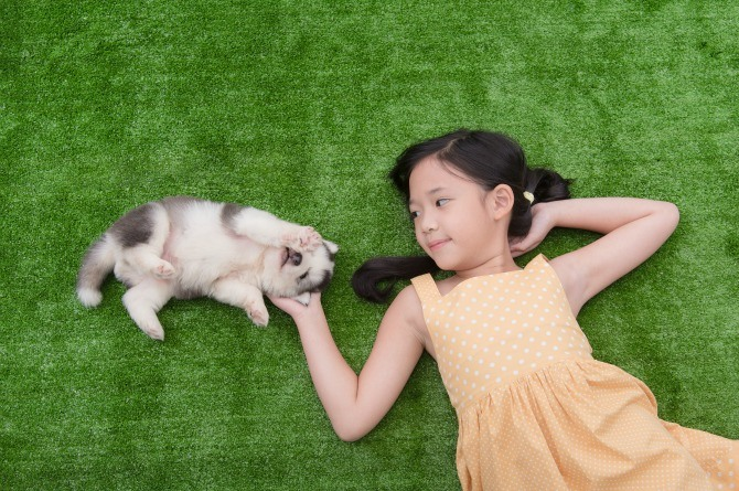 does having puppies affect asthma in kids
