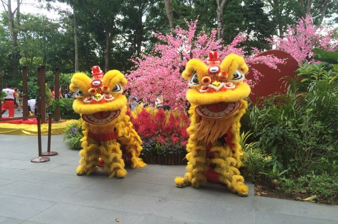 Check out the lion dances amidst the beautiful foliage
