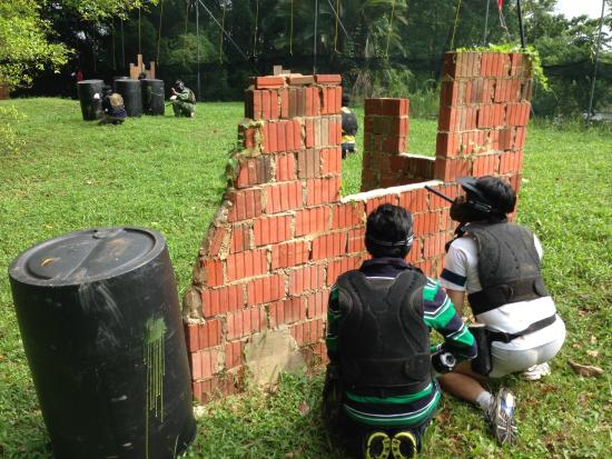 red-dynasty-paintball