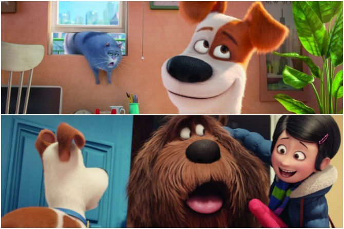 secretpets Win an EXCLUSIVE movie hamper from The Secret Life Of Pets!