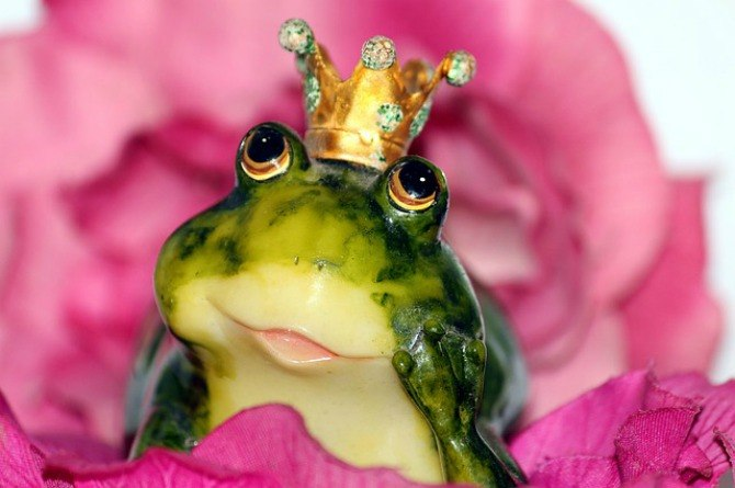 princess culture, frog, crown, toy