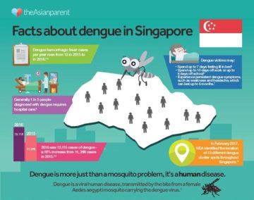 prevent dengue singapore
