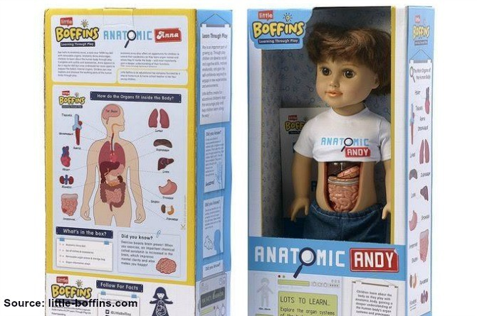 andy The much awaited Anatomic Anna and Andy dolls may be delayed
