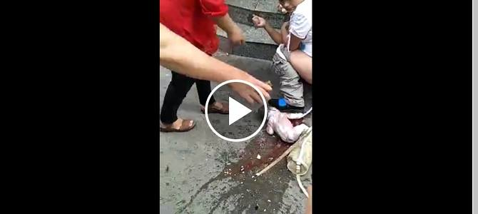 Woman pulls down pants, baby slips out