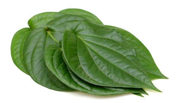 Can betel leaves really help clear a baby's nose congestion?