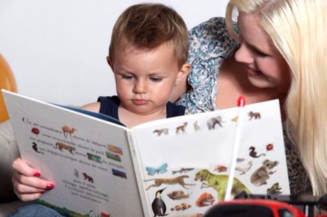Read wordless books with your child