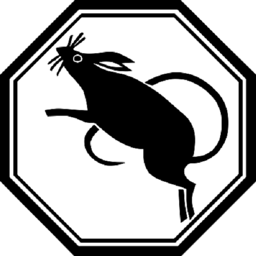 src=https://sg.theasianparent.com/wp content/uploads/2018/01/Rat.png 2018 Chinese Zodiac predictions according to renowned Feng Shui Master Joey Yap!