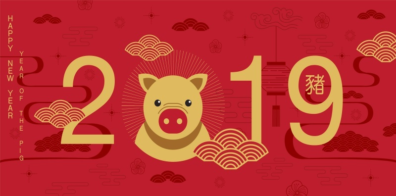 baby born in the year of the pig