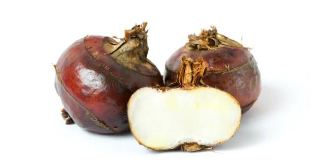 Water Chestnuts During Pregnancy: Health Benefits And 5 Recipes Your Must Try