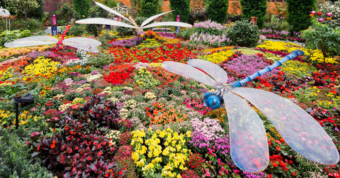 5. Flowery Fun Times at the Flower Dome