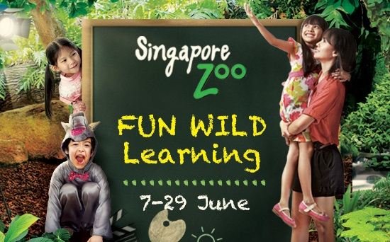 11. Singapore Zoo: Fun Wild Learning Details